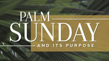 Palm Sunday And Its Purpose